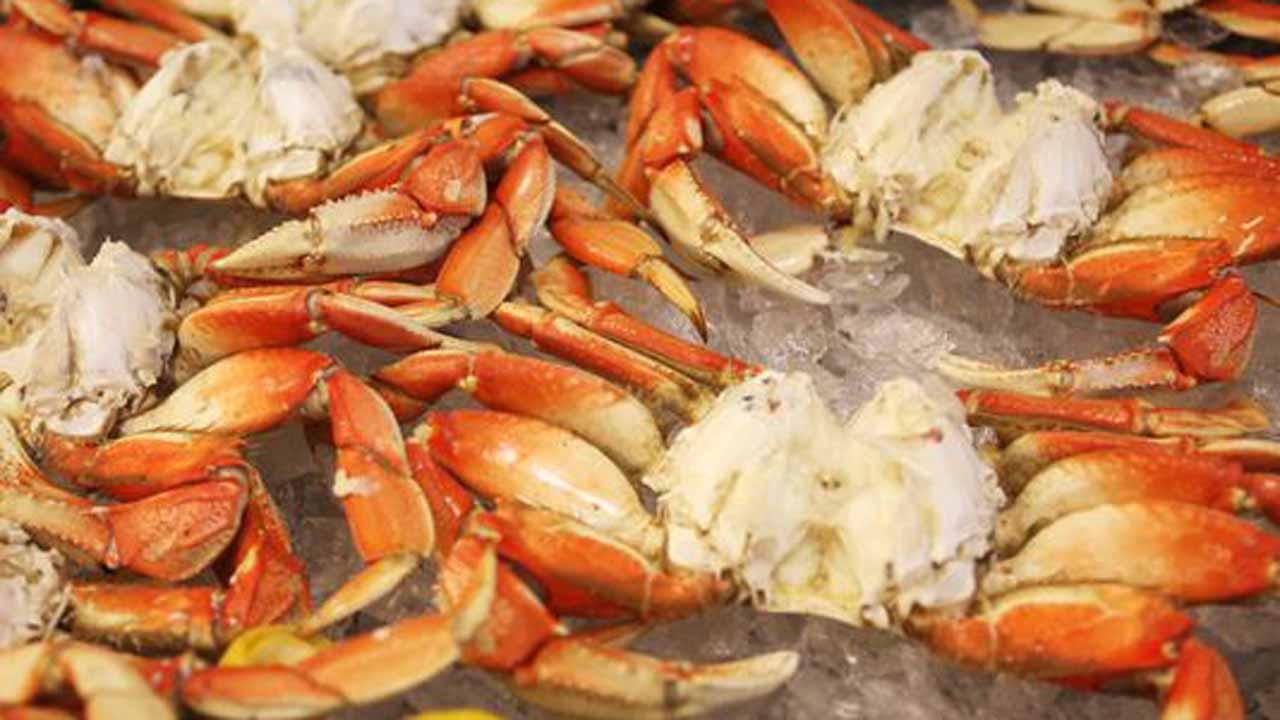 Oregon dungeness crab season opens jan 4 for Crab fishing oregon