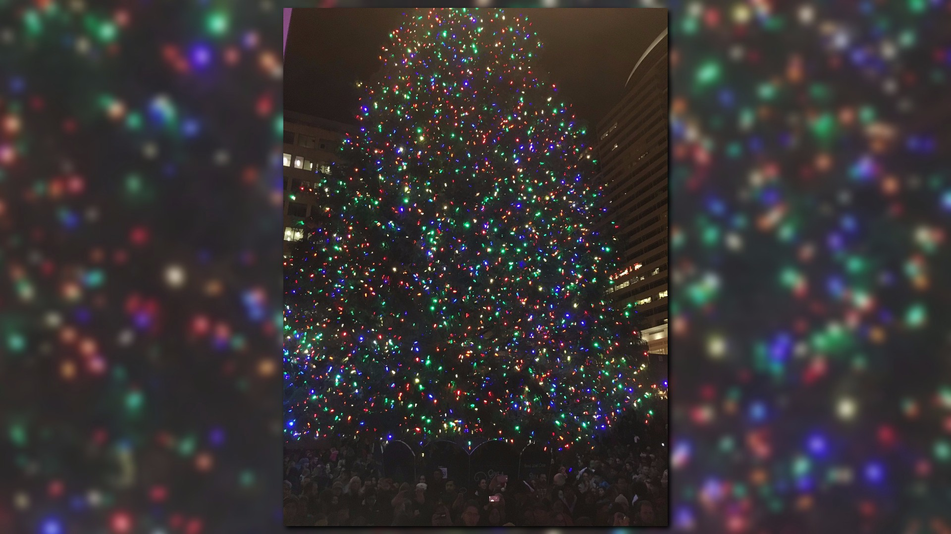 Holiday tree lit in Pioneer Courthouse Square KGWcom