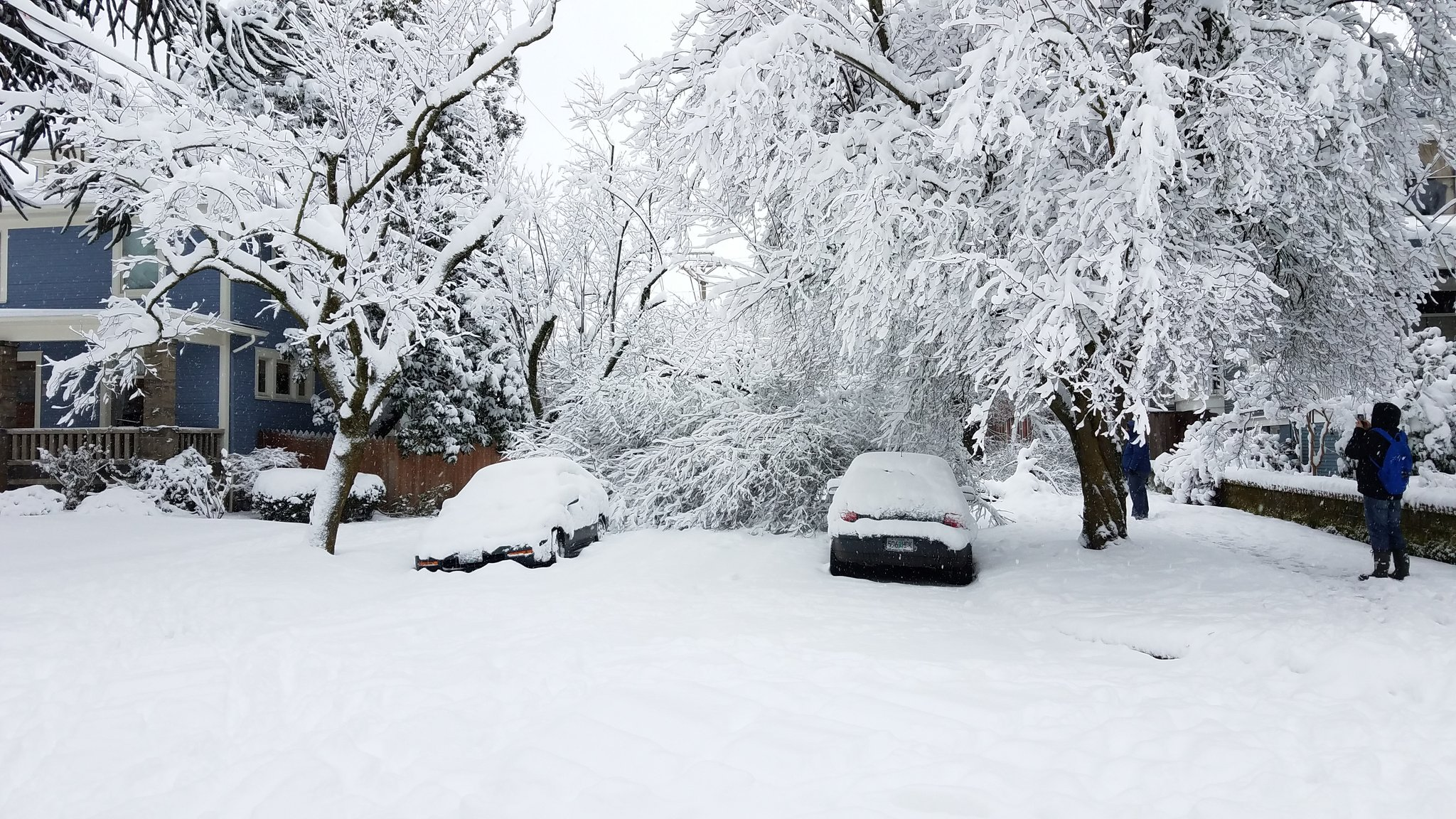 kgw.com | KGW Reporter Notebook: January 2017 snowstorm in